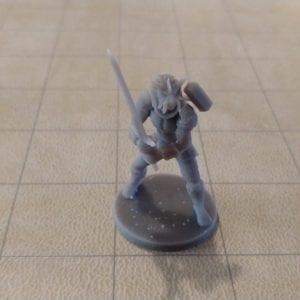 Adventurers/NPCs Dragonborn Great Weapon Fighter