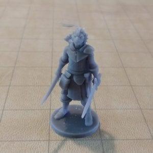 Adventurers/NPCs Dragonborn Two Sword Ranger