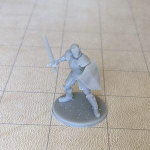 Adventurers/NPCs Helmed Male Paladin